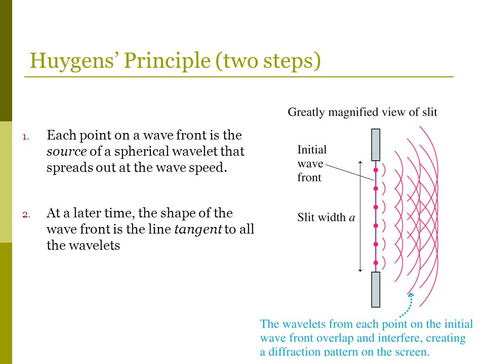 1. Each point on a wave front is the source of a spherical wavelet that spreads out at the wave speed. 2. At a later time, the shape of the wave front