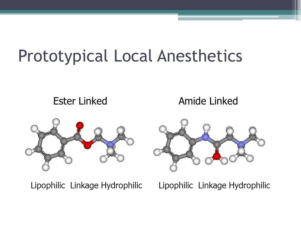 Prototypical Local Anesthetics Lipophilic Linkage Hydrophilic Ester LinkedAmide Linked