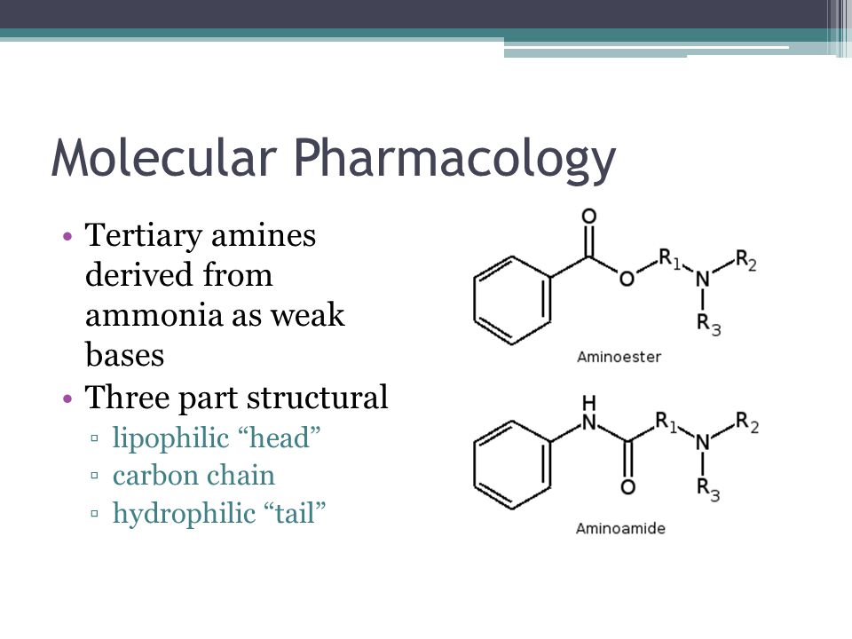 """Molecular Pharmacology Tertiary amines derived from ammonia as weak bases Three part structural ▫lipophilic """"head"""" ▫carbon chain ▫hydrophilic """"tail"""""""