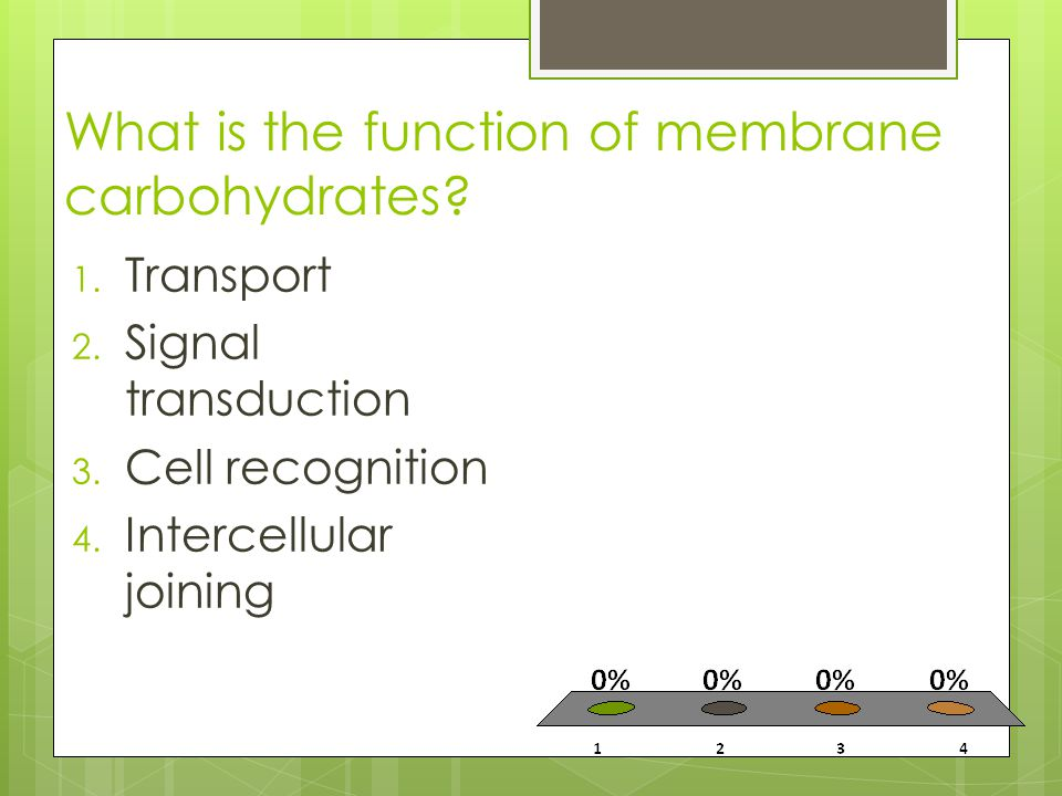 What is the function of membrane carbohydrates? 1. Transport 2. Signal transduction 3. Cell recognition 4. Intercellular joining
