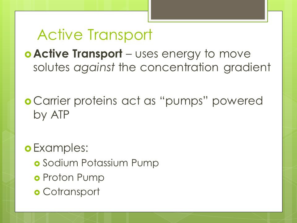 Active Transport  Active Transport – uses energy to move solutes against the concentration gradient  Carrier proteins act as pumps powered by ATP  Examples:  Sodium Potassium Pump  Proton Pump  Cotransport