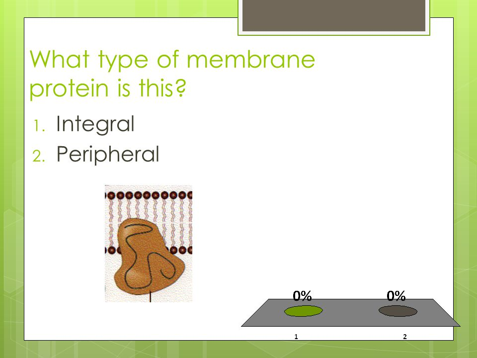 What type of membrane protein is this 1. Integral 2. Peripheral