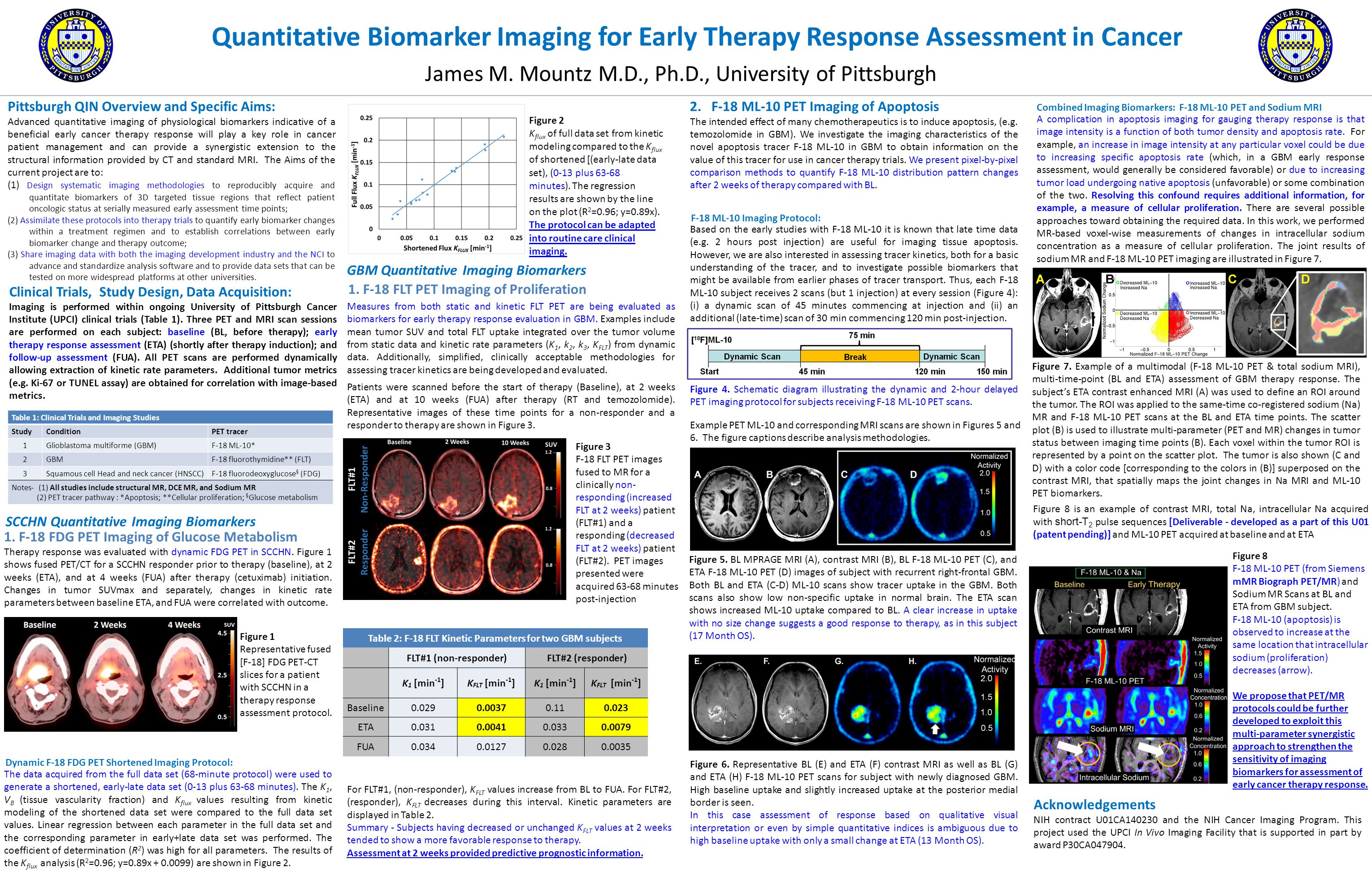 Quantitative Biomarker Imaging for Early Therapy Response Assessment in Cancer James M.