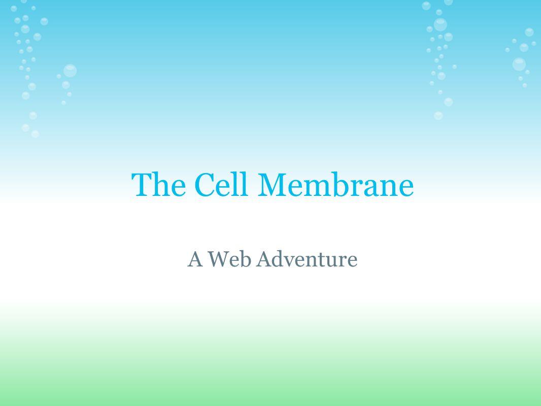 The Cell Membrane A Web Adventure
