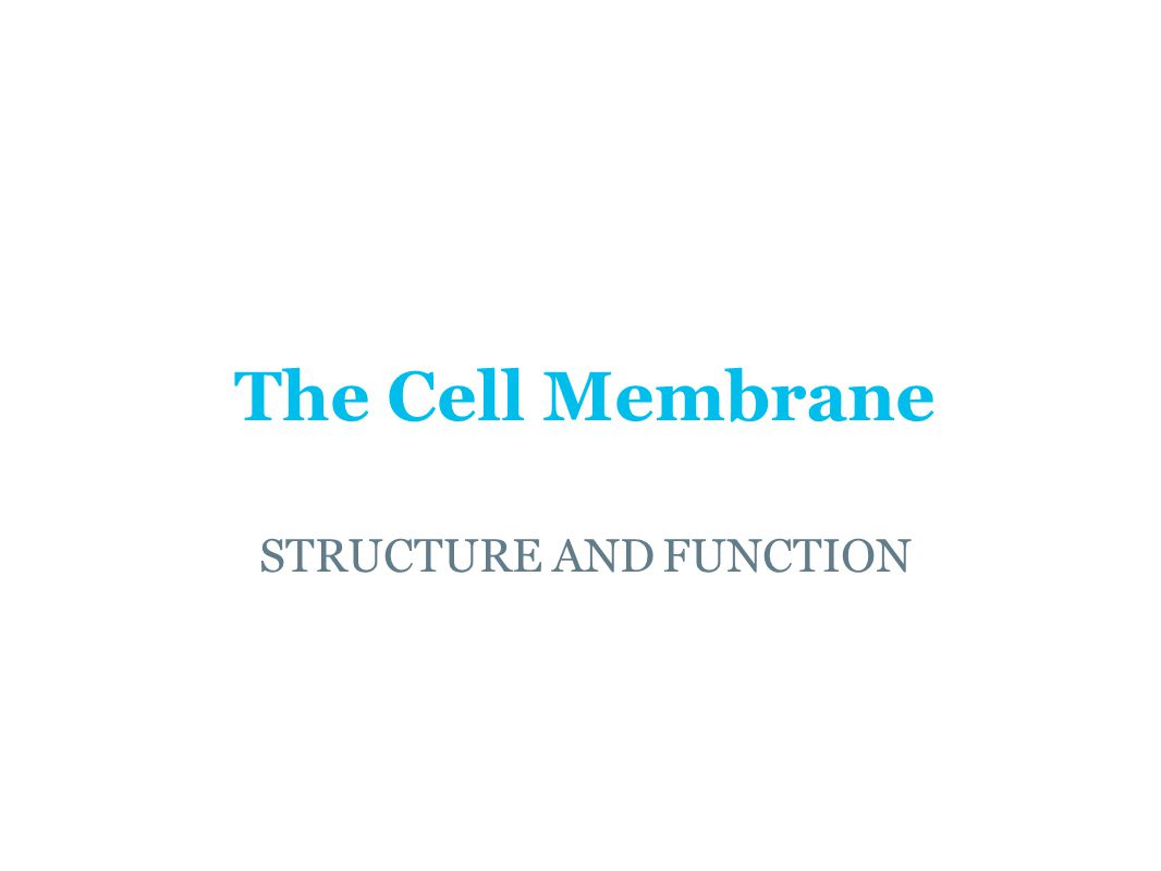The Cell Membrane STRUCTURE AND FUNCTION