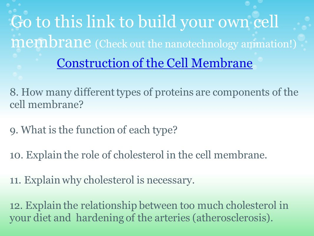 Go to this link to build your own cell membrane (Check out the nanotechnology animation!) Construction of the Cell Membrane 8. How many different type