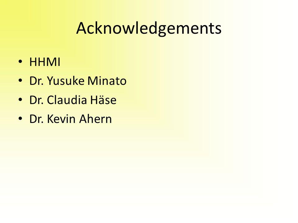 Acknowledgements HHMI Dr. Yusuke Minato Dr. Claudia Häse Dr. Kevin Ahern