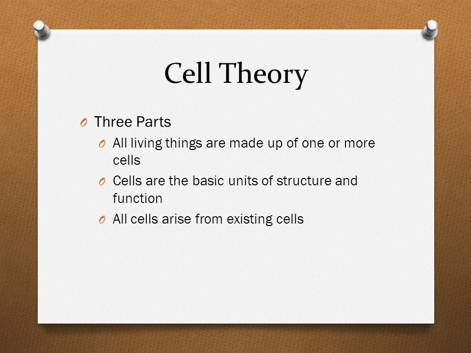 Features of Cells O Cell Membrane: O Cytoplasm: