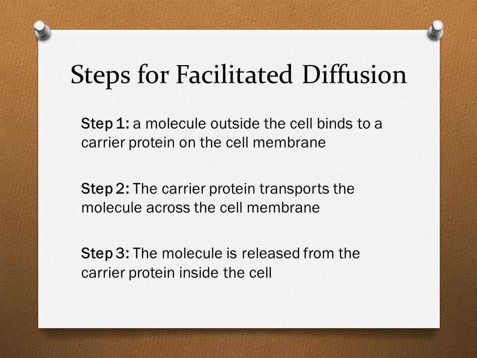 Steps for Facilitated Diffusion Step 1: a molecule outside the cell binds to a carrier protein on the cell membrane Step 2: The carrier protein transports the molecule across the cell membrane Step 3: The molecule is released from the carrier protein inside the cell