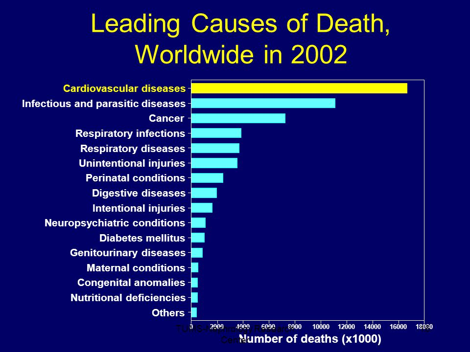 Genitourinary diseases Leading Causes of Death, Worldwide in 2002 Cardiovascular diseases Infectious and parasitic diseases Cancer Respiratory infections Respiratory diseases Unintentional injuries Perinatal conditions Digestive diseases Intentional injuries Neuropsychiatric conditions Diabetes mellitus Maternal conditions Congenital anomalies Nutritional deficiencies Others 020004000600080001000012000140001600018000 Number of deaths (x1000) 16TUMS-Nephrology Research Center