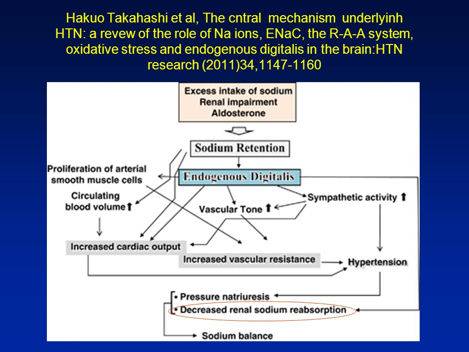 Hakuo Takahashi et al, The cntral mechanism underlyinh HTN: a revew of the role of Na ions, ENaC, the R-A-A system, oxidative stress and endogenous digitalis in the brain:HTN research (2011)34,1147-1160