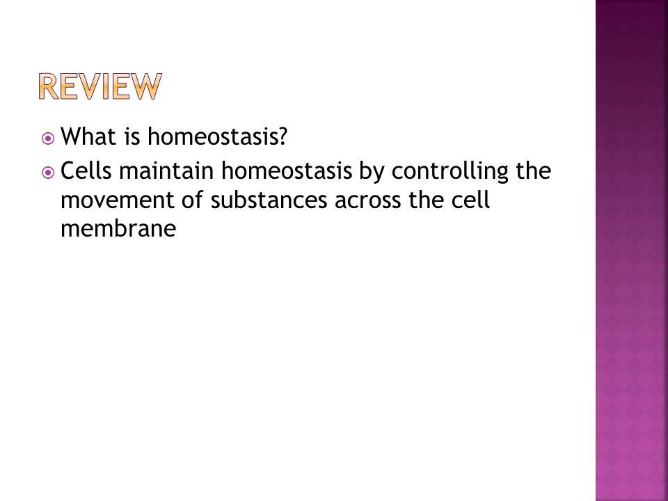 What is homeostasis?  Cells maintain homeostasis by controlling the movement of substances across the cell membrane