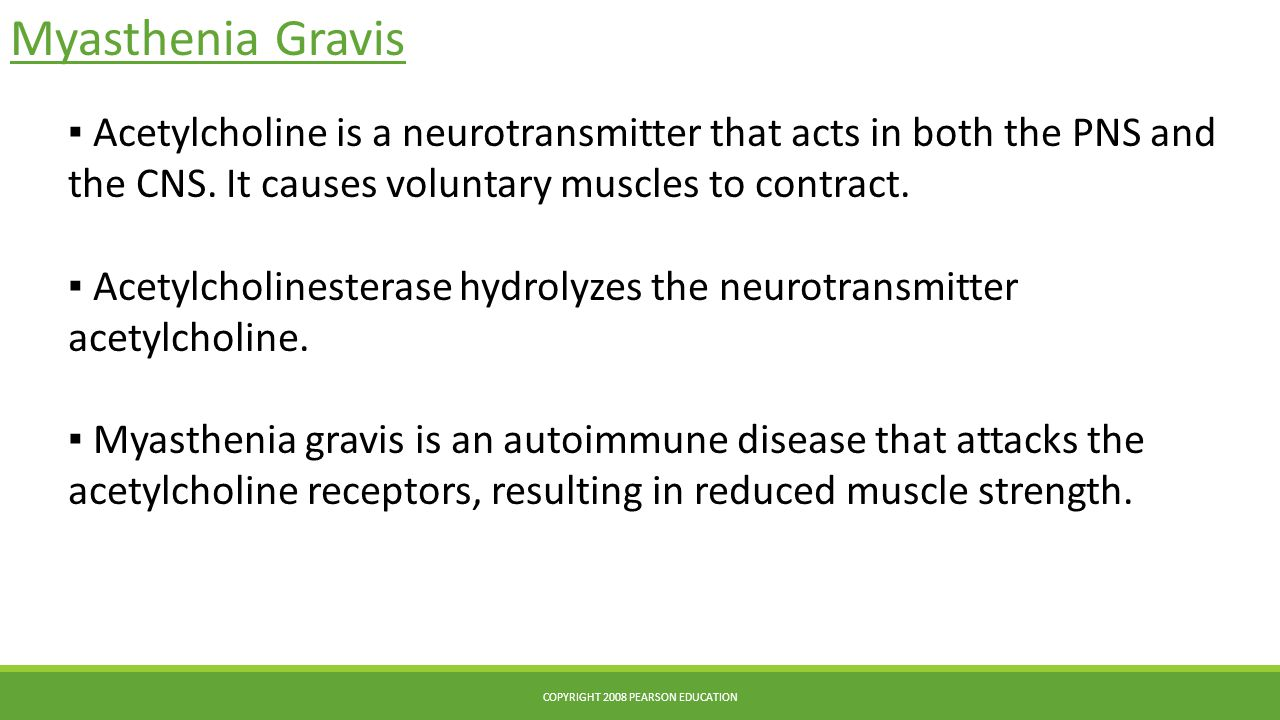 Myasthenia Gravis COPYRIGHT 2008 PEARSON EDUCATION ▪ Acetylcholine is a neurotransmitter that acts in both the PNS and the CNS. It causes voluntary mu