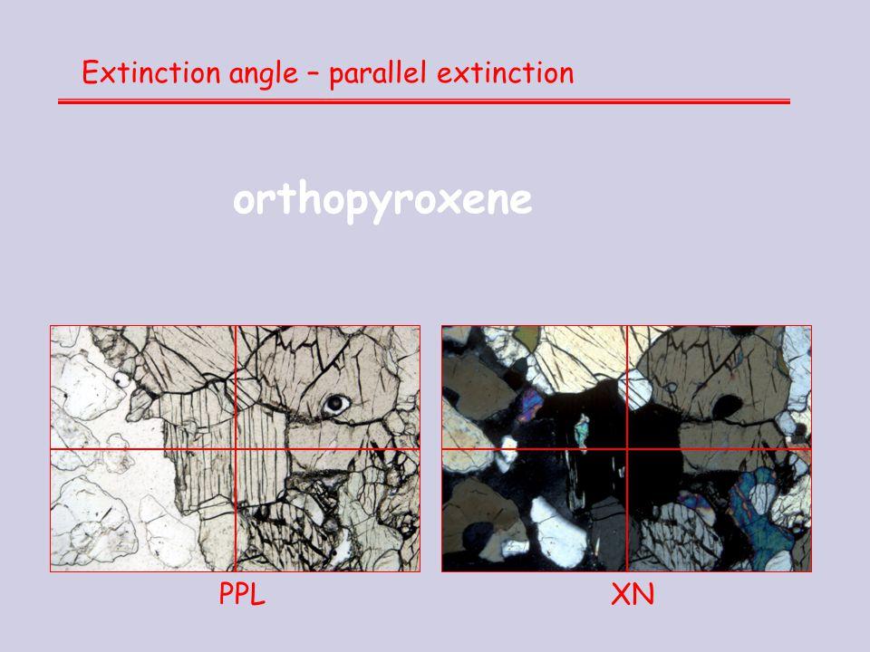 Extinction angle – parallel extinction PPL XN orthopyroxene
