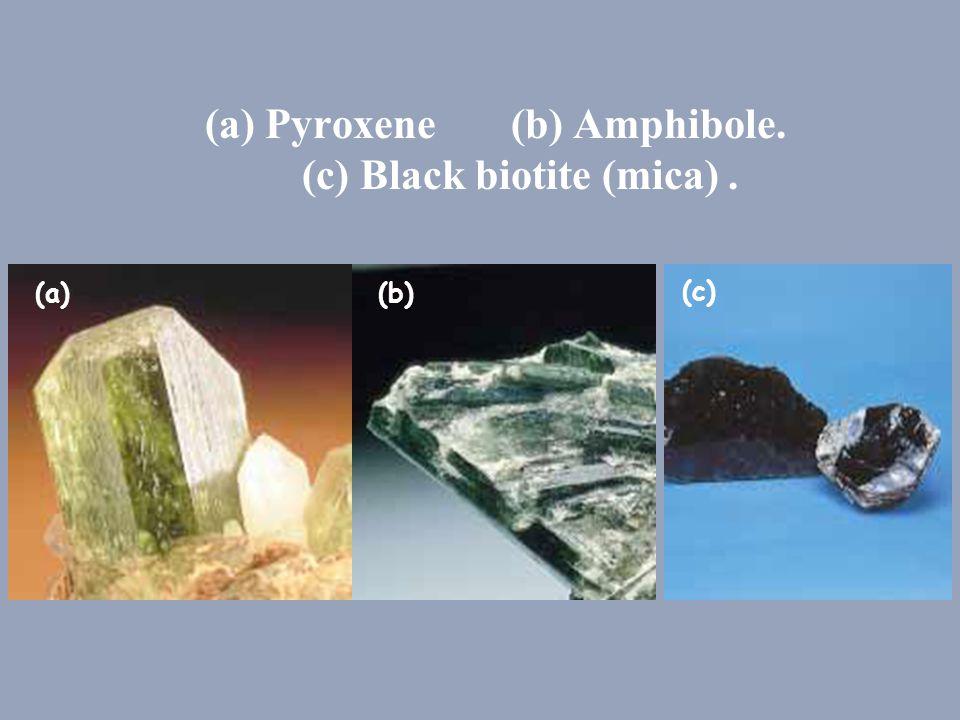 (a) Pyroxene (b) Amphibole. (c) Black biotite (mica). (a)(b) (c)