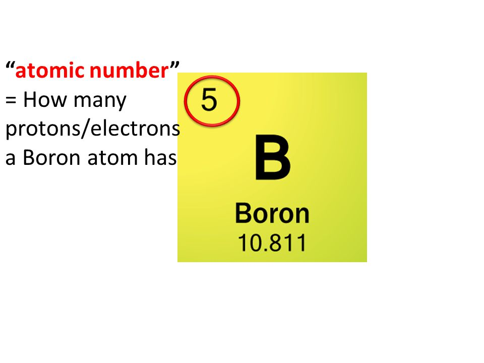 atomic number = How many protons/electrons a Boron atom has