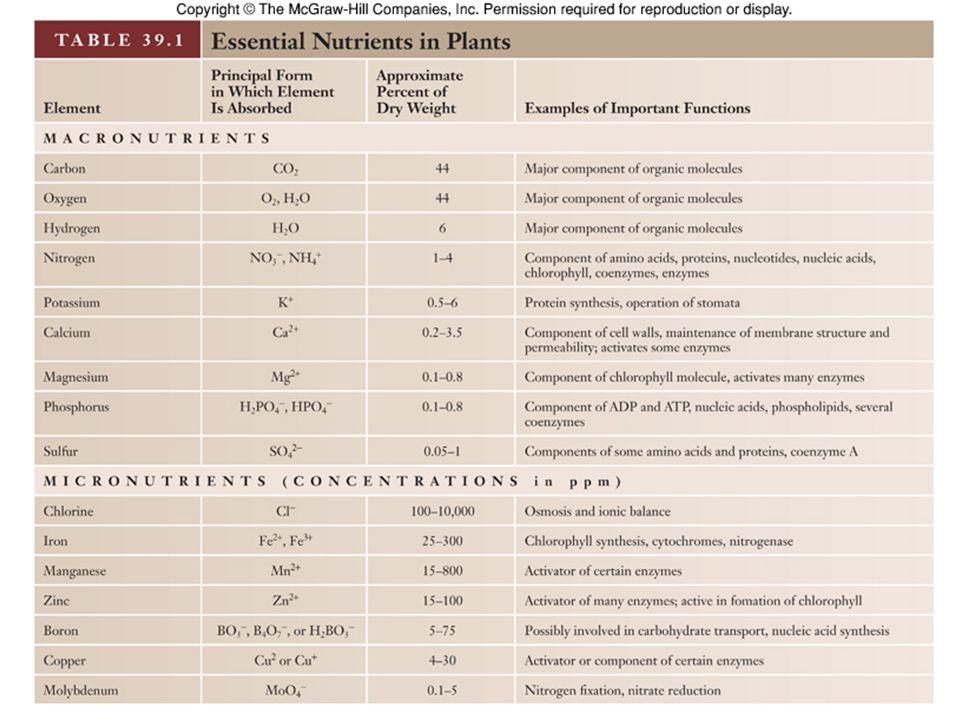 11 Plant Nutrients