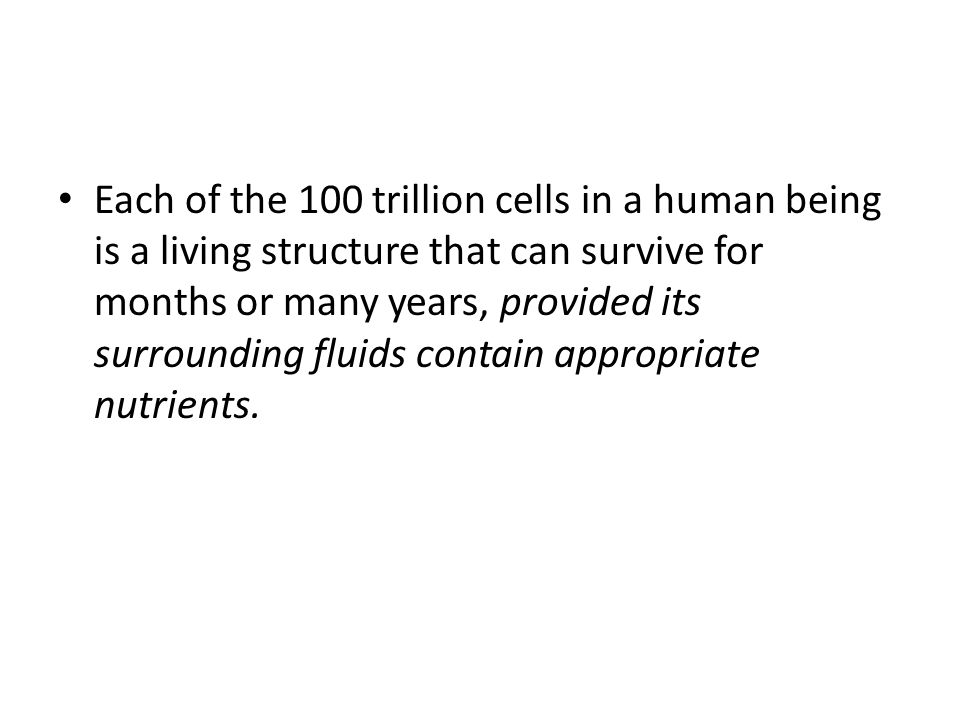 Each of the 100 trillion cells in a human being is a living structure that can survive for months or many years, provided its surrounding fluids conta