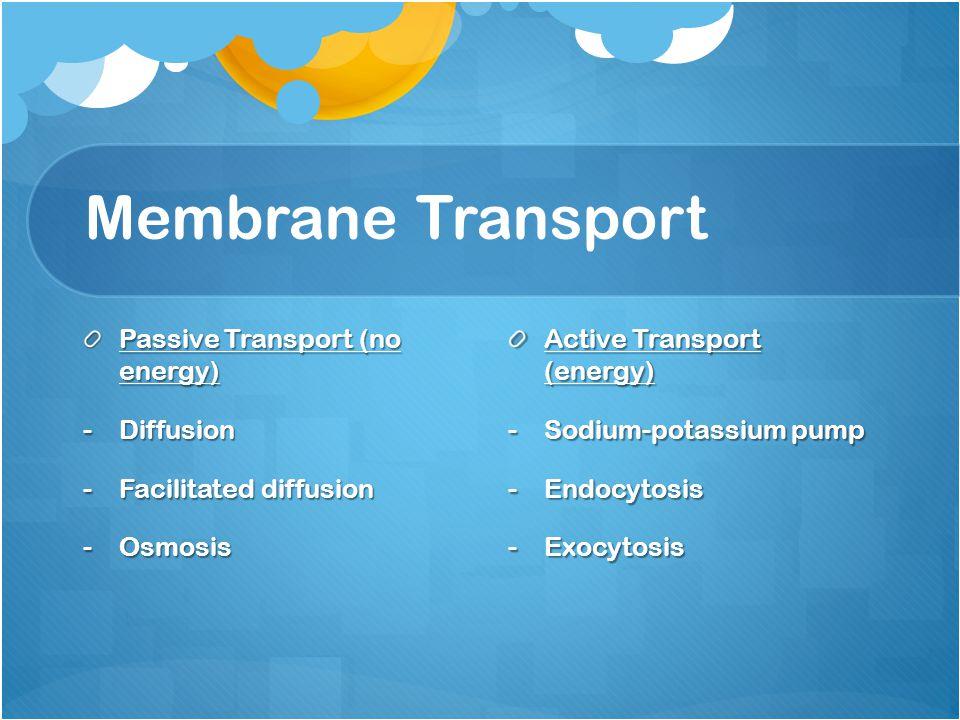 Membrane Transport Passive Transport (no energy) -Diffusion -Facilitated diffusion -Osmosis Active Transport (energy) -Sodium-potassium pump -Endocyto