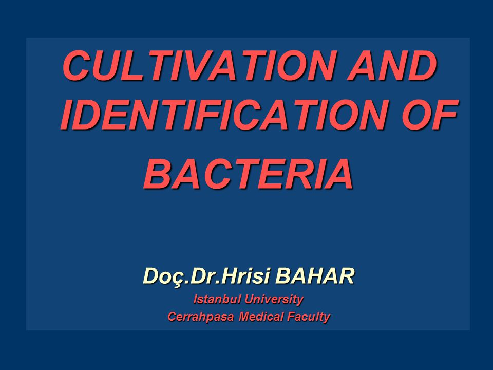 WHAT IS CULTIVATION OF BACTERIA ► The survival of microorganisms in the laboratory, as well as in nature, depends on their ability to grow under certain chemical and physical conditions ► Cultivation of bacteria is to obtain a bacterial growth under certain chemical and physical conditions.