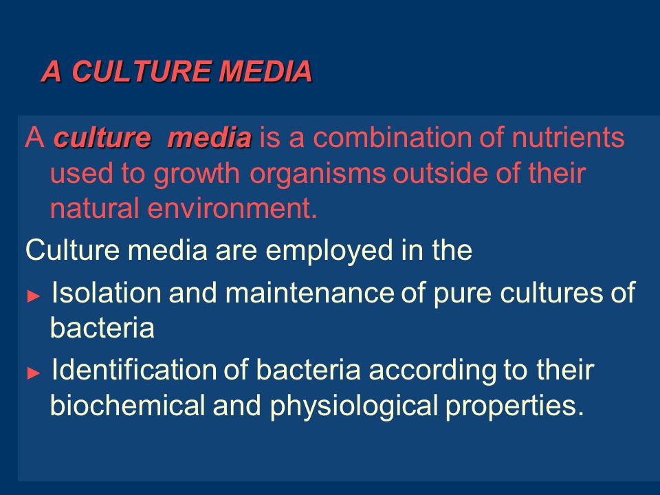 Identification of bacteria 2- Culture appearance : a- The appearance of bacterial colonies b- The effect of colony on culture media are often characteristic of the bacterial species.