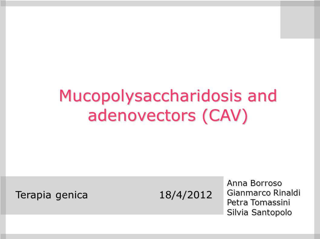 Abstract The mucopolysaccharidoses (MPSs) are lysosomal storage disorders caused by the accumulation of glycosaminoglycans in the lysosomes that leads to a cascade of multisystemic disease manifestations.