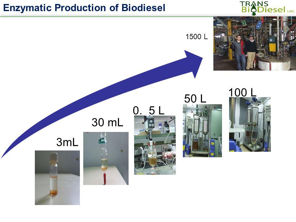 Enzymatic Production of Biodiesel. 3mL 30 mL 0. 5 L 50 L 100 L 1500 L
