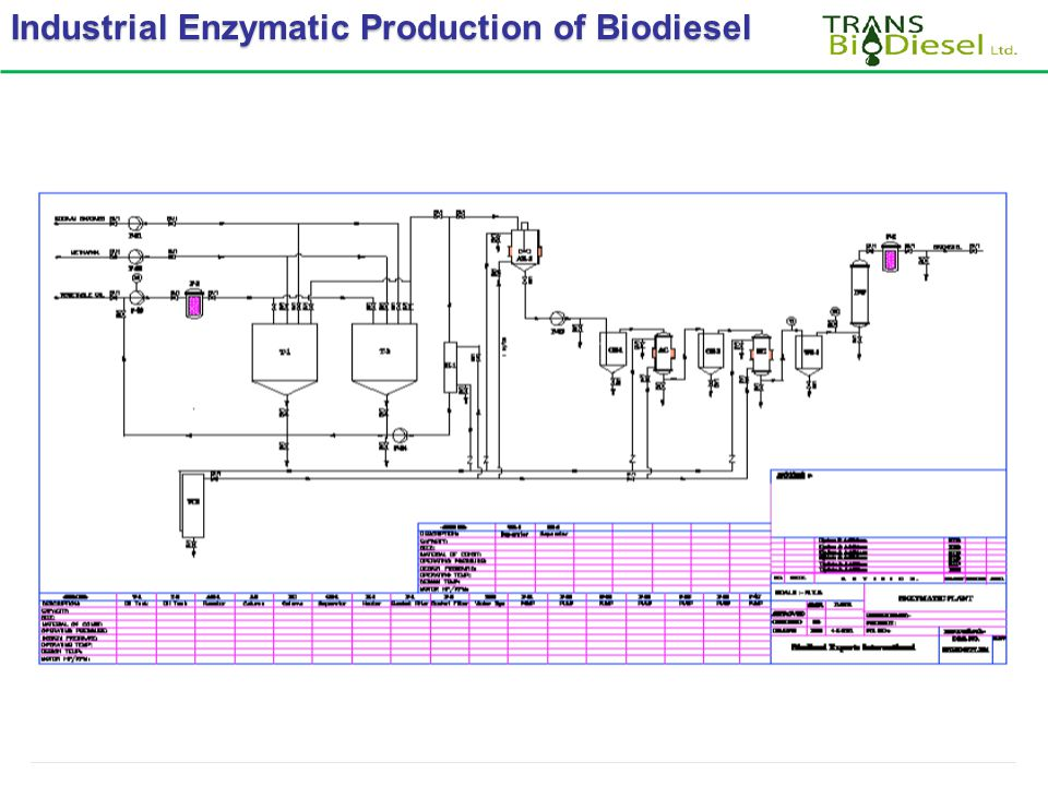 Industrial Enzymatic Production of Biodiesel