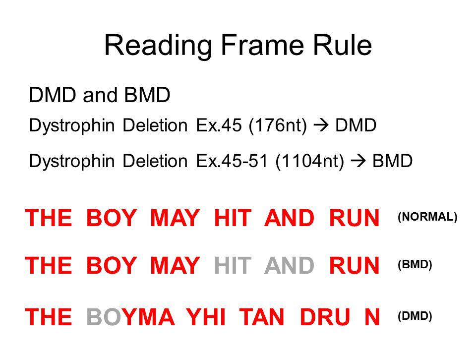 Reading Frame Rule DMD and BMD Dystrophin Deletion Ex.45 (176nt)  DMD Dystrophin Deletion Ex.45-51 (1104nt)  BMD THE BOY MAY HIT AND RUN (NORMAL)(BM