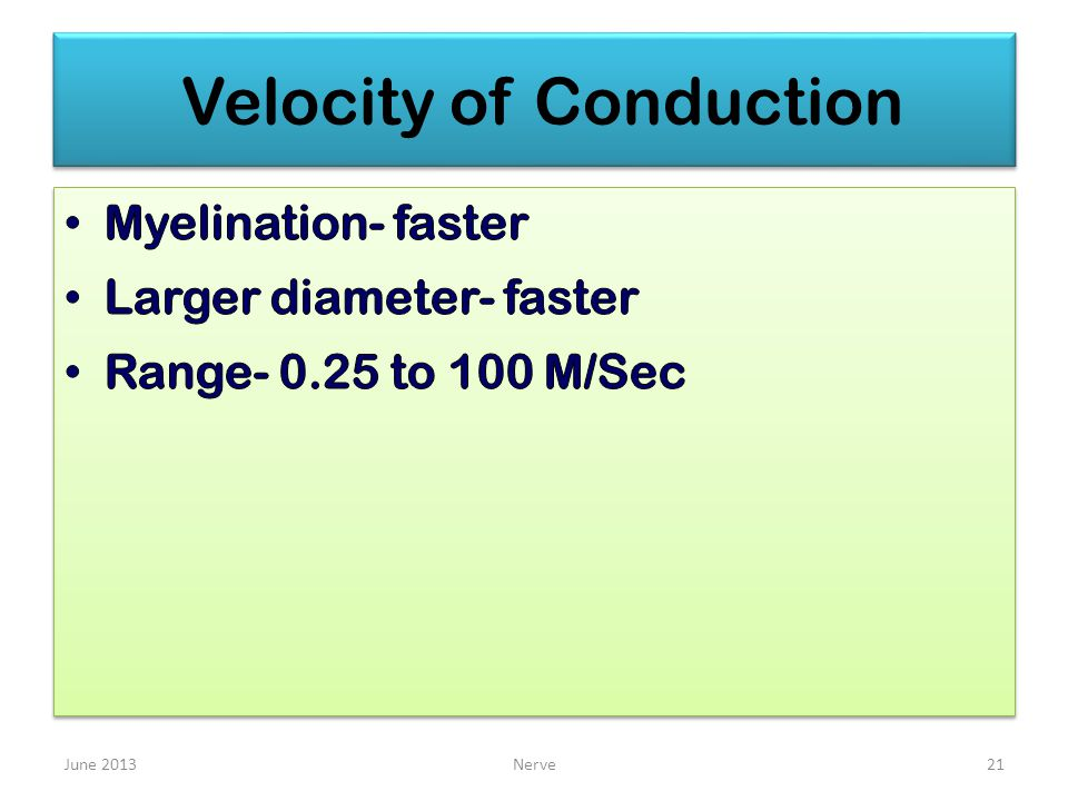 Velocity of Conduction June 2013Nerve21