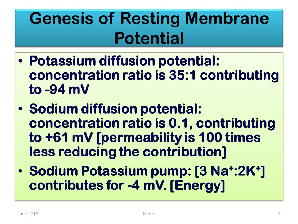 Genesis of Resting Membrane Potential June 2013Nerve9