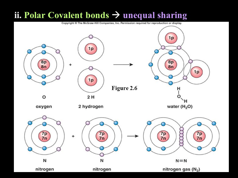 ii. Polar Covalent bonds  unequal sharing Figure 2.6