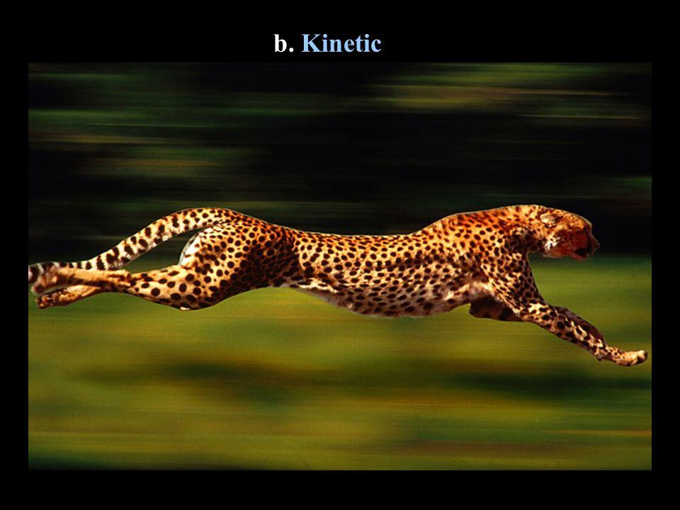 b. Kinetic