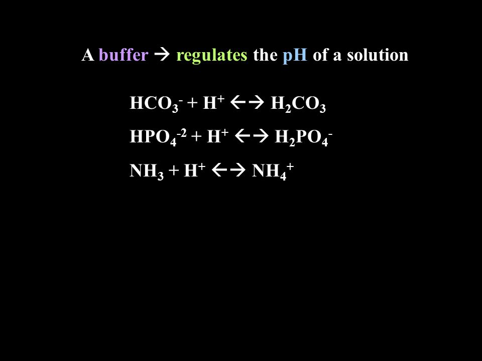 A buffer  regulates the pH of a solution HCO 3 - + H +  H 2 CO 3 HPO 4 -2 + H +  H 2 PO 4 - NH 3 + H +  NH 4 +