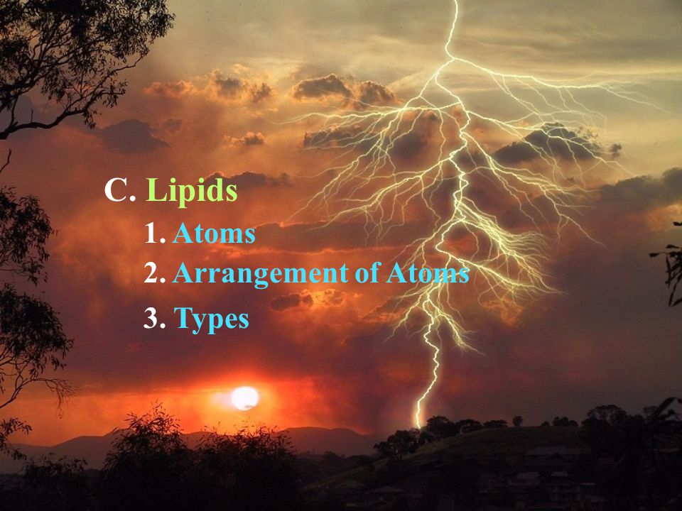 C. Lipids 1. Atoms 2. Arrangement of Atoms 3. Types