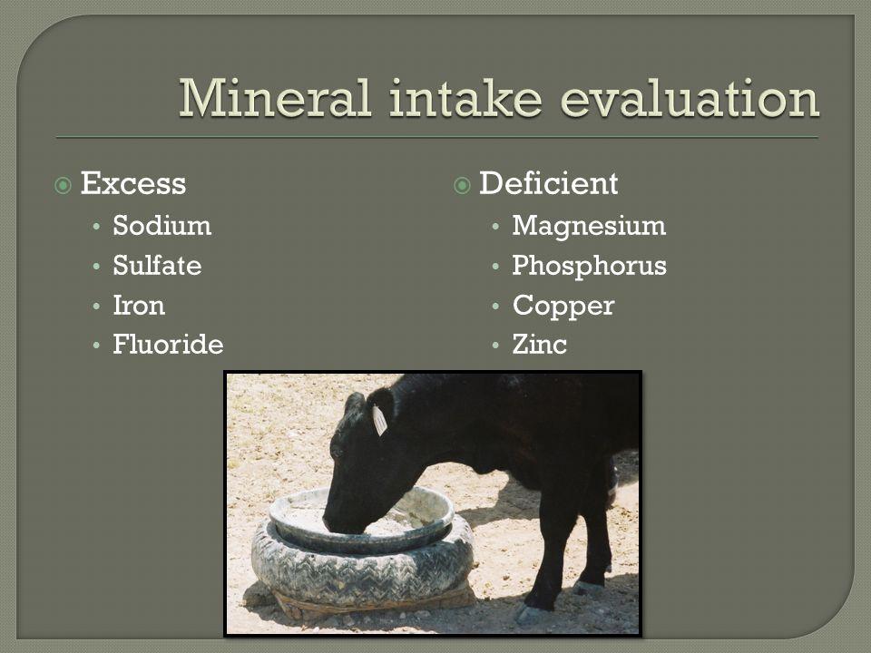  Excess Sodium Sulfate Iron Fluoride  Deficient Magnesium Phosphorus Copper Zinc