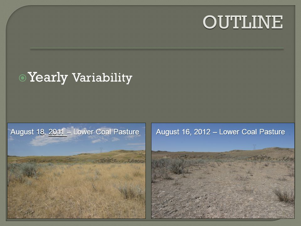 OUTLINE  Yearly Variability August 16, 2012 – Lower Coal Pasture August 18, 2011 – Lower Coal Pasture