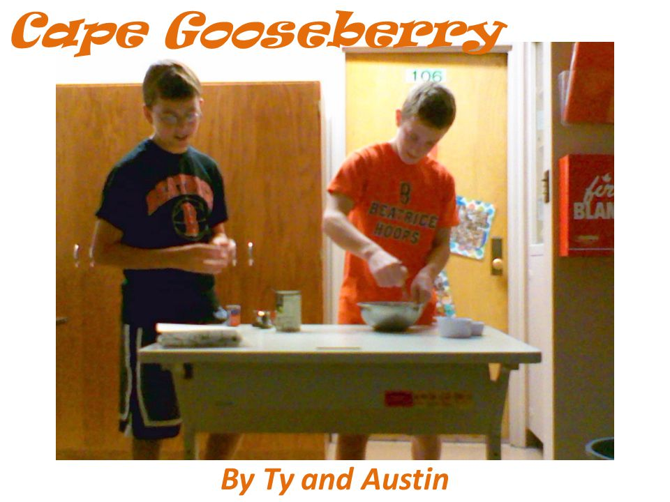 By Ty and Austin Cape Gooseberry