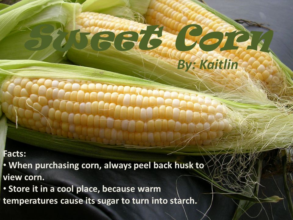 Sweet Corn By: Kaitlin Facts: When purchasing corn, always peel back husk to view corn.