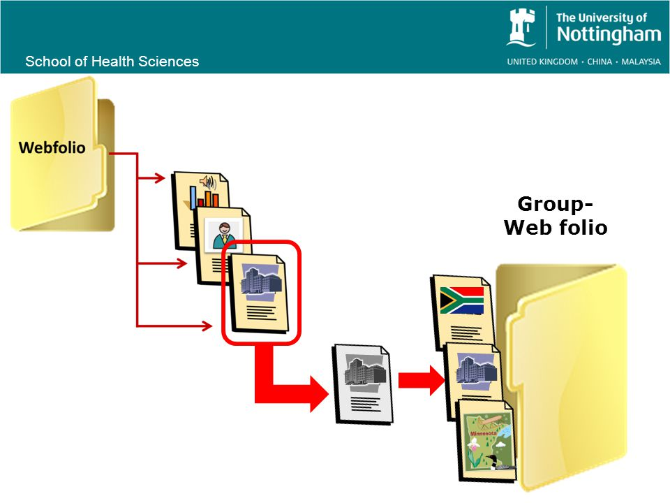 School of Health Sciences Group- Web folio