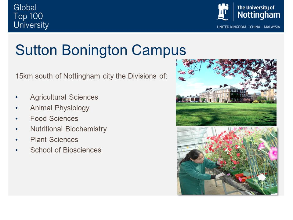 Sutton Bonington Campus 15km south of Nottingham city the Divisions of: Agricultural Sciences Animal Physiology Food Sciences Nutritional Biochemistry Plant Sciences School of Biosciences
