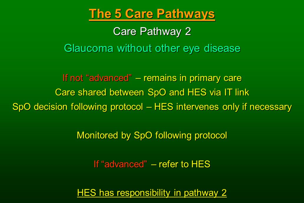 The 5 Care Pathways Care Pathway 2 Glaucoma without other eye disease If not advanced – remains in primary care Care shared between SpO and HES via IT link SpO decision following protocol – HES intervenes only if necessary Monitored by SpO following protocol If advanced – refer to HES HES has responsibility in pathway 2