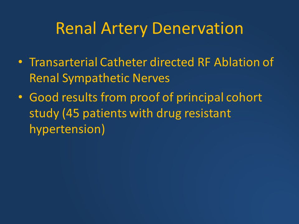 Renal Artery Denervation Transarterial Catheter directed RF Ablation of Renal Sympathetic Nerves Good results from proof of principal cohort study (45