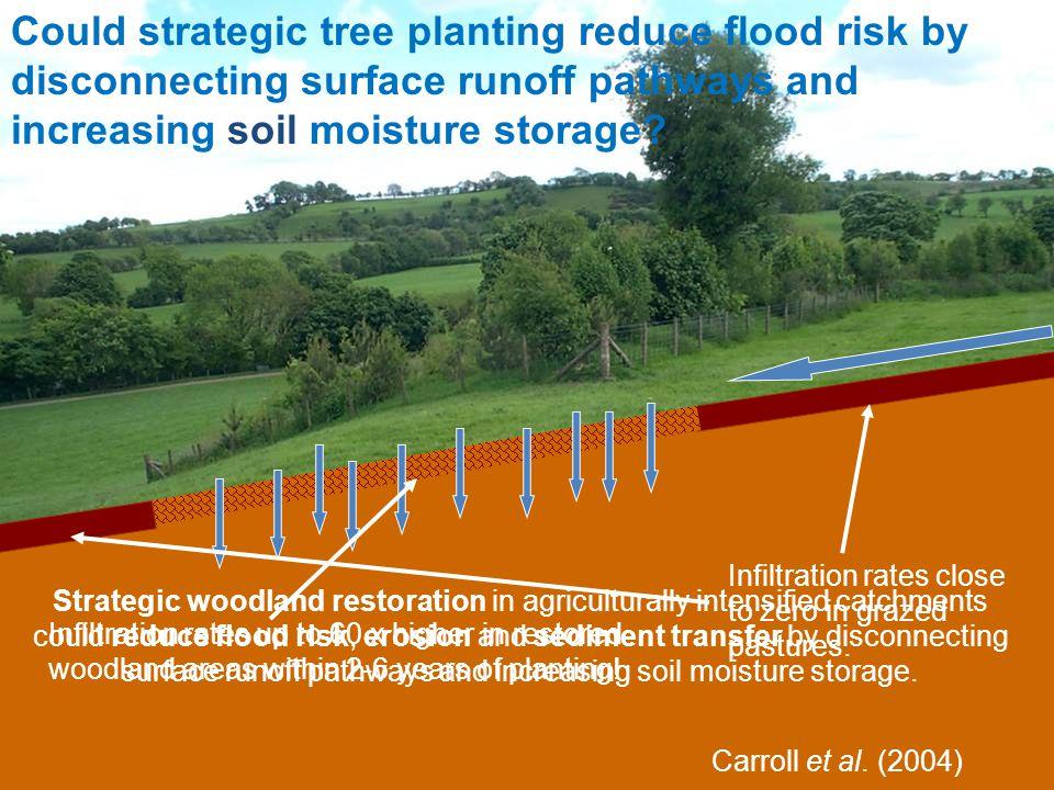 www.floodrisk.org.uk EPSRC Grant: EP/FP202511/1 Carroll et al.