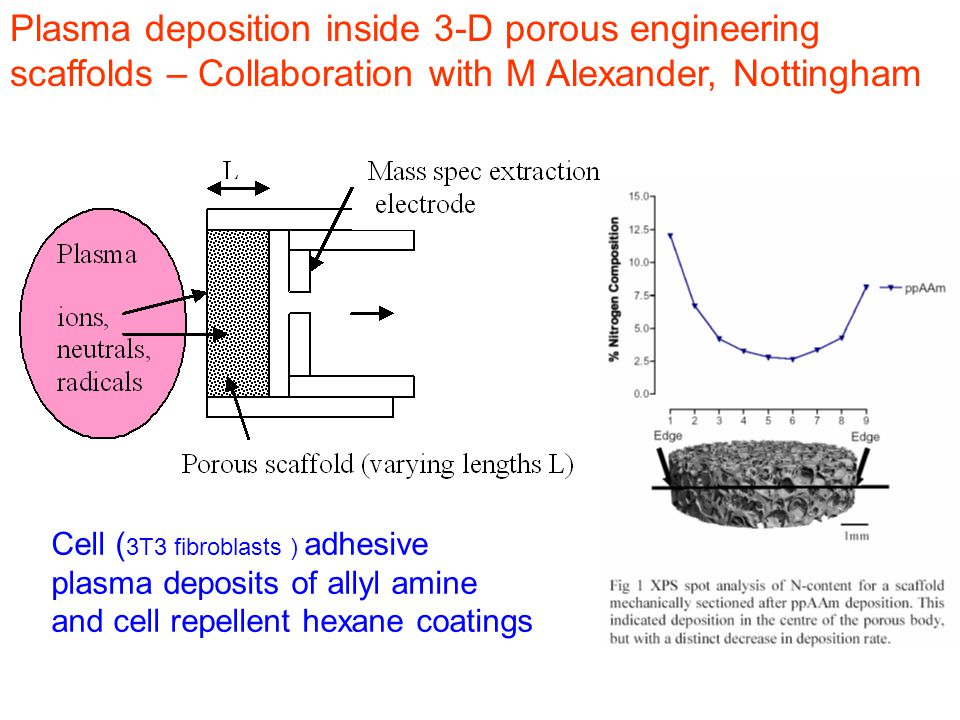 Plasma deposition inside 3-D porous engineering scaffolds – Collaboration with M Alexander, Nottingham Cell ( 3T3 fibroblasts ) adhesive plasma deposits of allyl amine and cell repellent hexane coatings