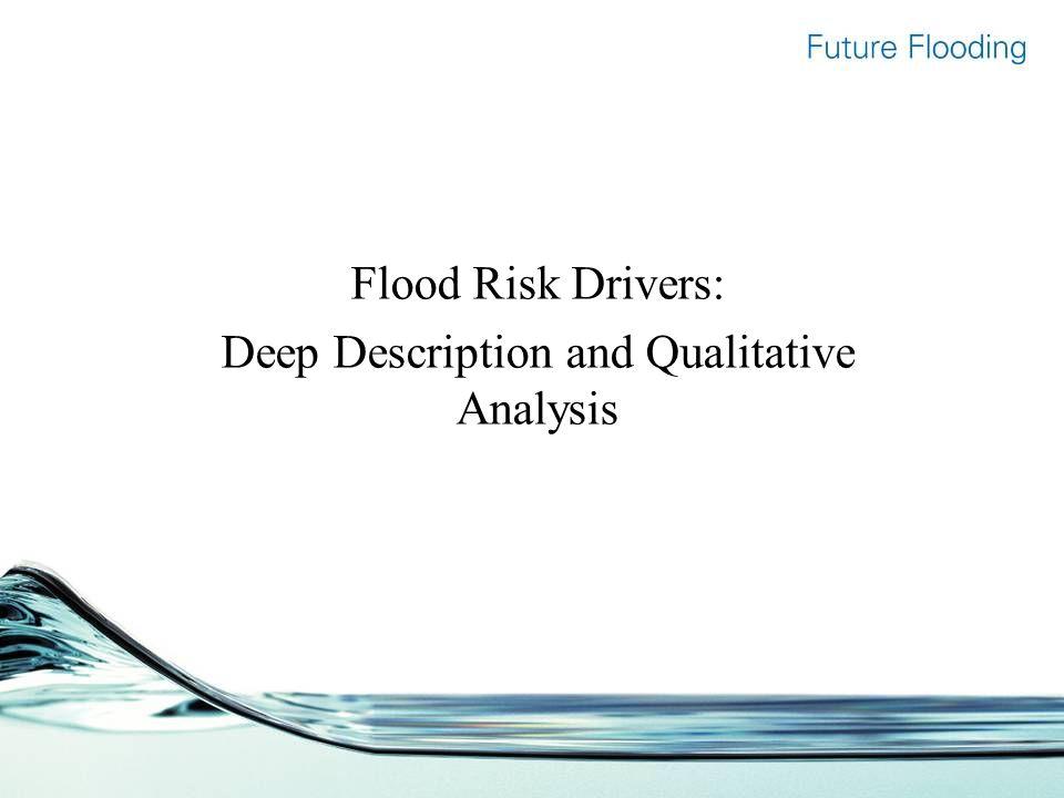Flood Risk Drivers: Deep Description and Qualitative Analysis