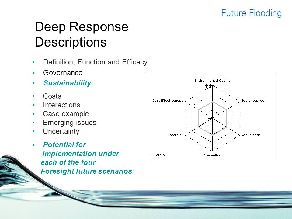 Deep Response Descriptions Definition, Function and Efficacy Governance Sustainability Costs Interactions Case example Emerging issues Uncertainty Potential for implementation under each of the four Foresight future scenarios