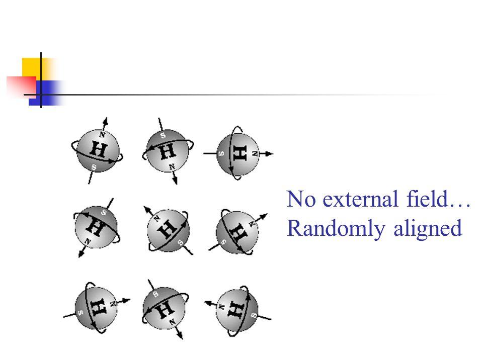 No external field… Randomly aligned