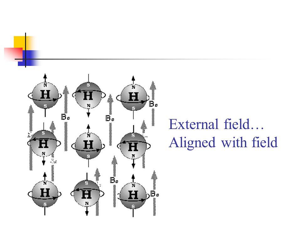 External field… Aligned with field