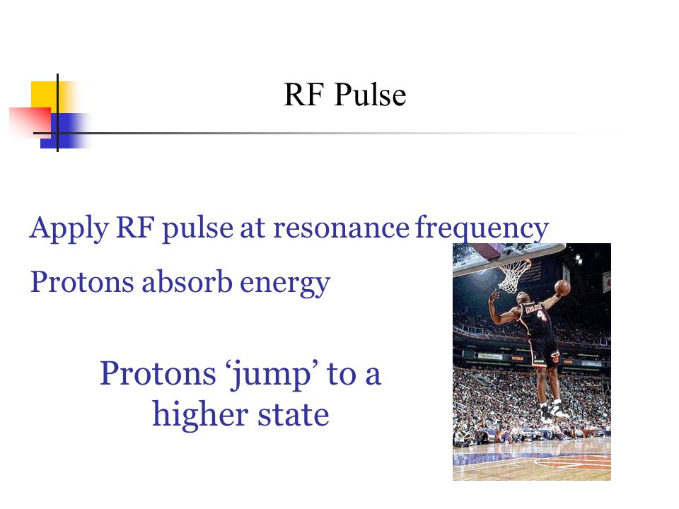 RF Pulse Apply RF pulse at resonance frequency Protons absorb energy Protons 'jump' to a higher state